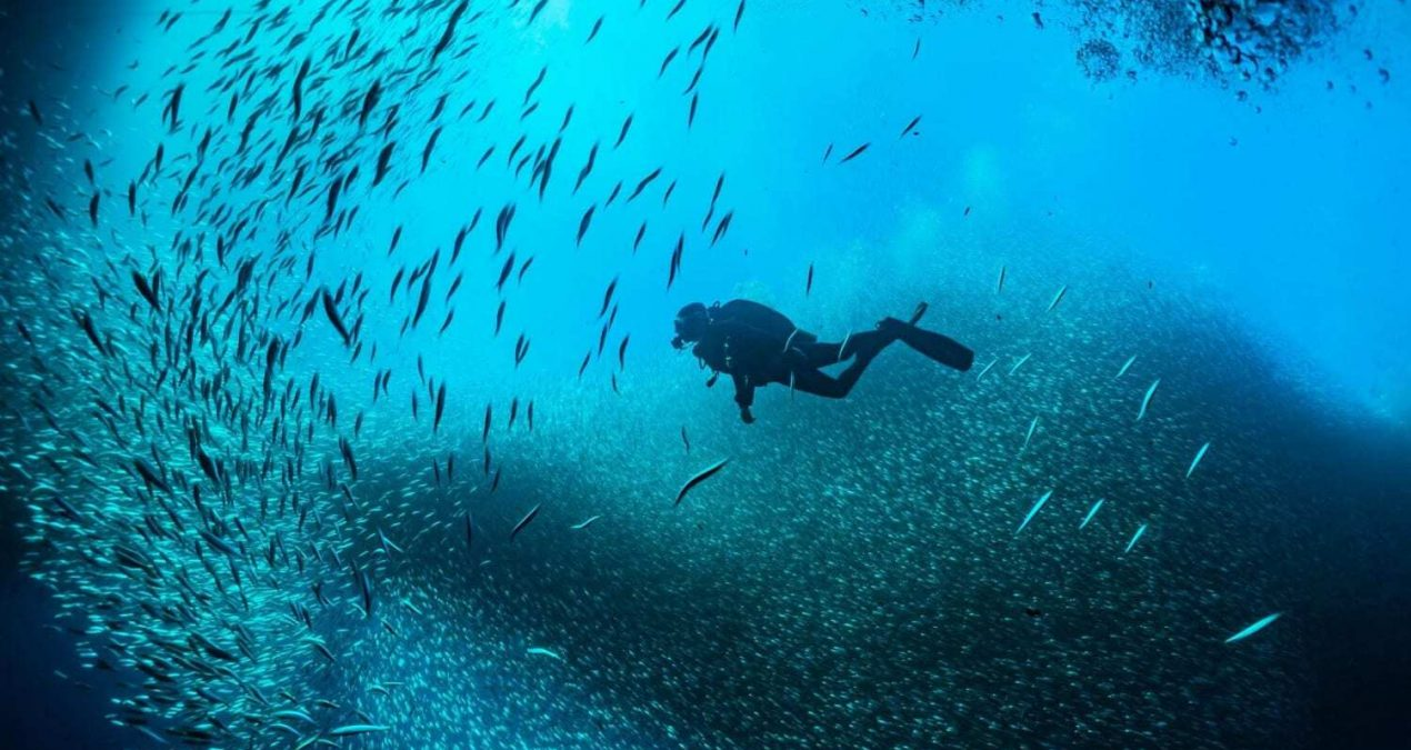 Travelling to the Best Diving Spots of the World